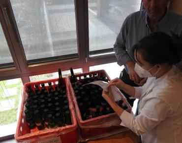 Blind Weinverkostung to go_4